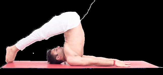 Yoga giảm đau đau lưng