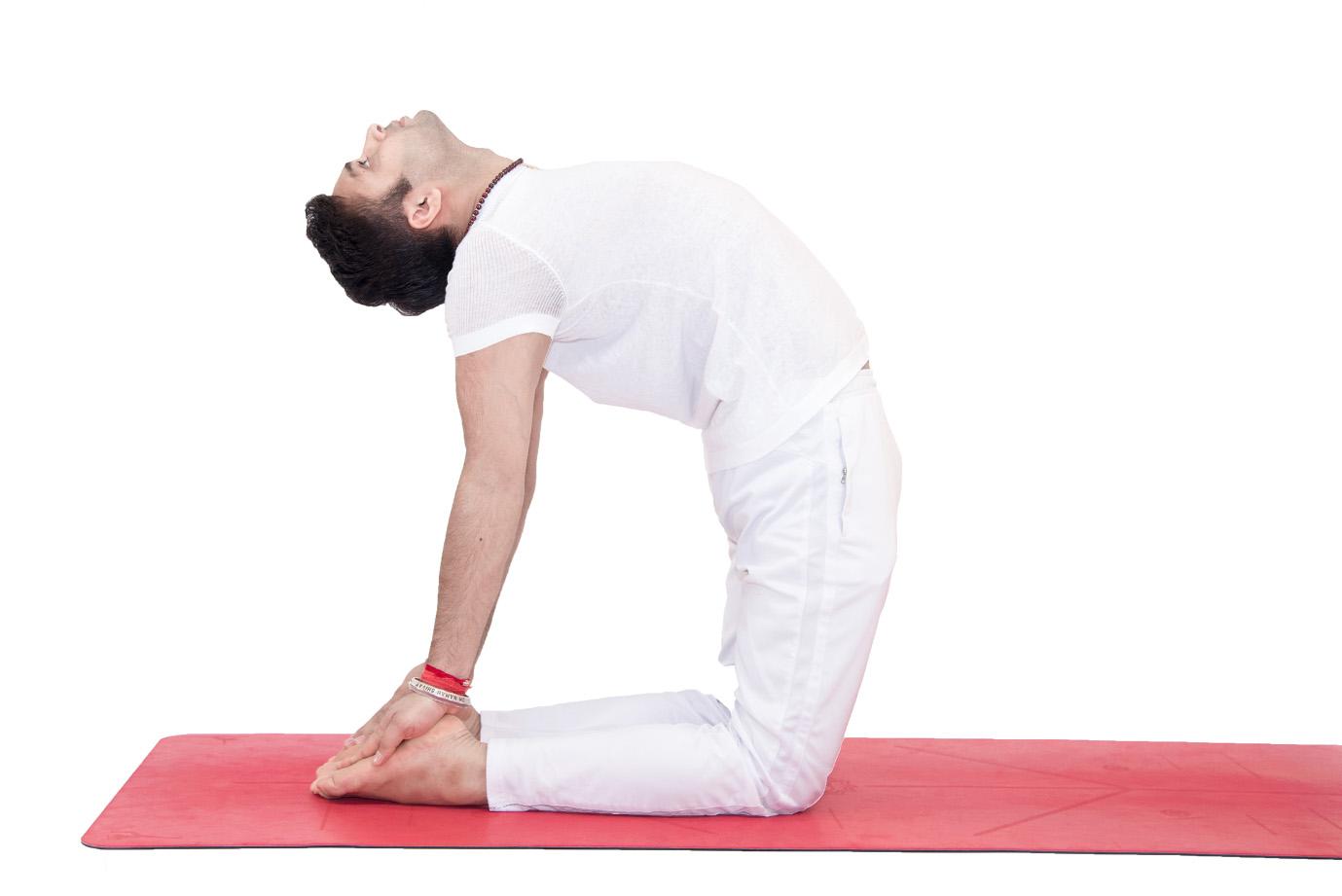 Kết quả hình ảnh cho Yoga có thể giúp trị bệnh thận hiệu quả